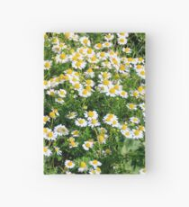 Field of chamomiles Hardcover Journal
