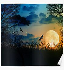 Beautiful Landscape 2 Poster