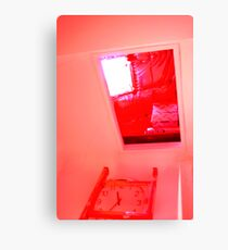 Open red #30 Canvas Print