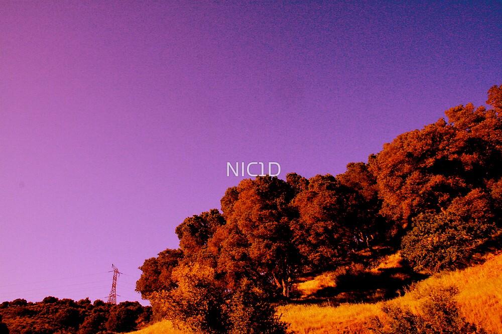 purple sky by NIC1D