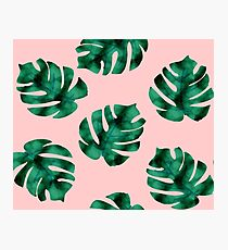 Tropical fern leaves on peach Photographic Print