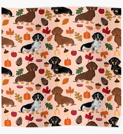 Dachshund dog breed fall autumn leaves doxie dachsie pet friendly pattern Poster