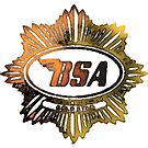 BSA Badge  by JohnLowerson