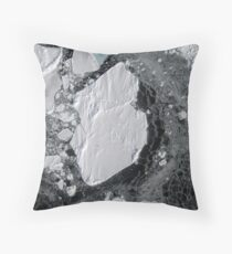 Lone Emperor on Ice Throw Pillow
