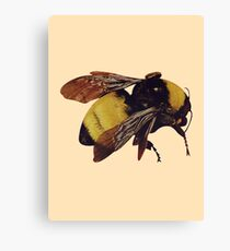 Tyler Scum Fuck Bee Canvas Print