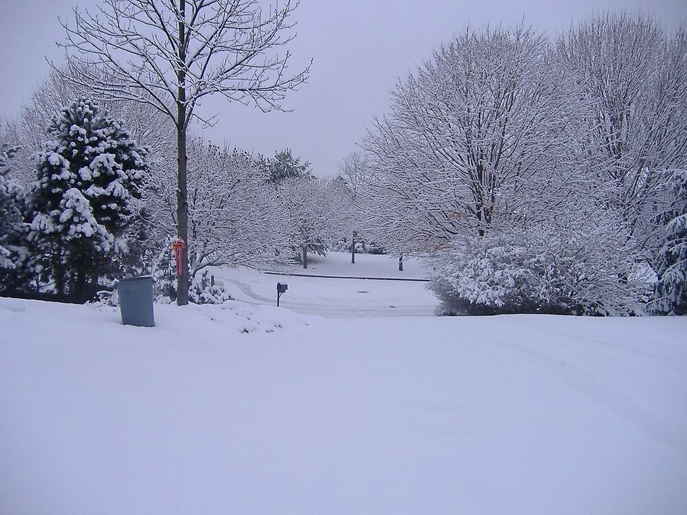 Snow by erinpasslow