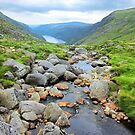 The upper lake, Glendalough viewed from above the waterfall by David Carton