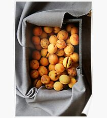 ripe apricots in wooden box Poster