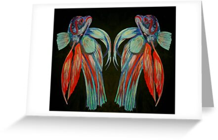 Betta Spendens - In Reflection by taiche