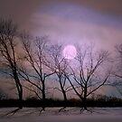 Bare souls under moonlight by Vasile Stan