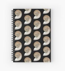 Cross Section of a Shell ~ Scientific Illustration  Spiral Notebook