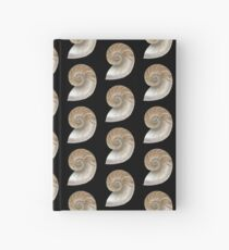 Cross Section of a Shell ~ Scientific Illustration  Hardcover Journal