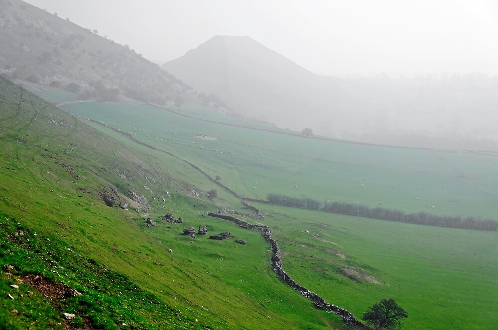 Along the Lower Reaches of Bunster Hill by Rod Johnson