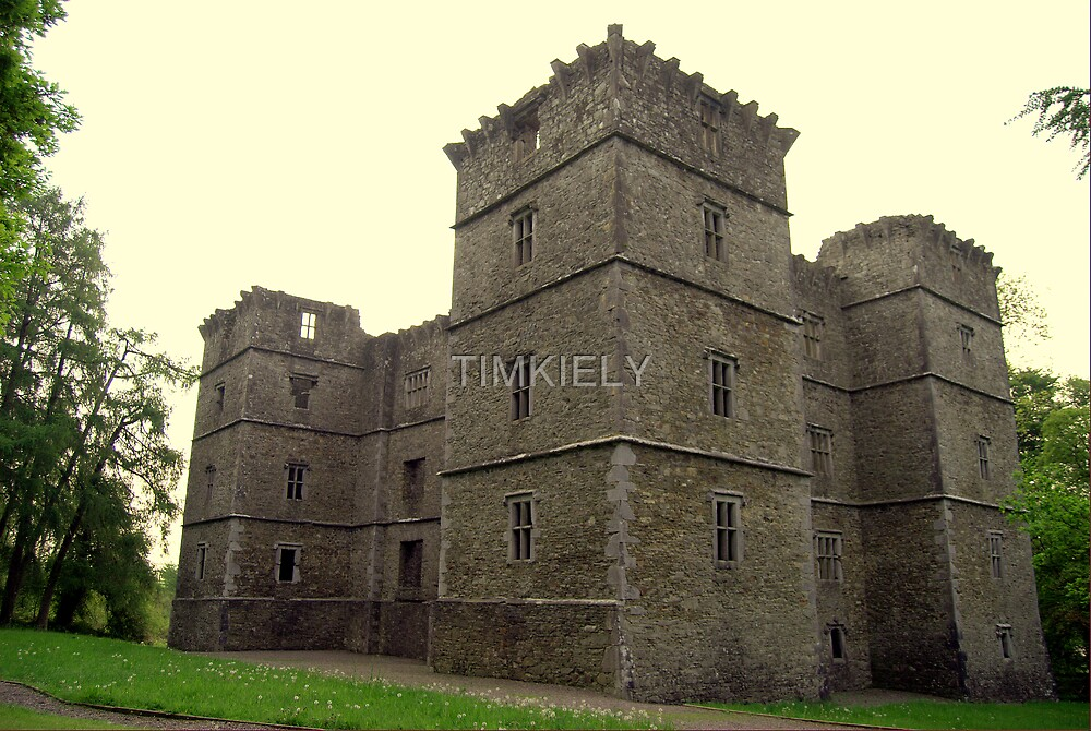 KANTURK  CASTLE  ( ireland ) by TIMKIELY