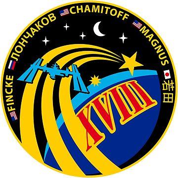 Expedition 18 Mission Patch by Quatrosales