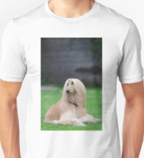afghan hound laying Unisex T-Shirt