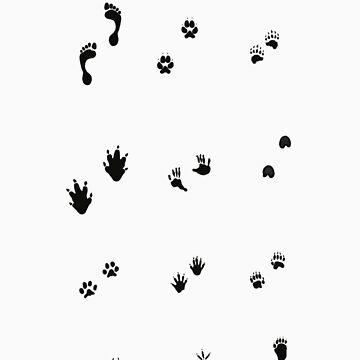 Foot Prints by lizzbeth