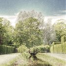 Bridge Over Calm Waters by Dashwood Collection
