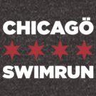 Chicago Swimrun by Greg Dressel