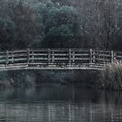 Bridge on the Lake - HDR by Jan Clarke