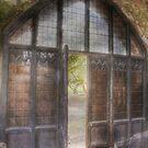 John's Door by Dashwood Collection