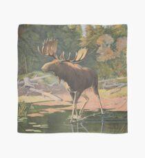 Vintage Moose Illustration (1902) Scarf