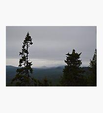 Pilkalampinoppi Photographic Print