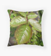 Rose Leaves With Raindrops Throw Pillow