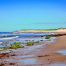 Another view of Greenwich Beach, PEI Canada by Shulie1