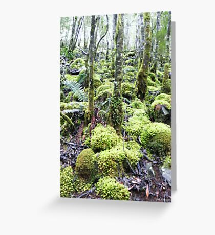 Green Wilderness Greeting Card