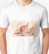 Vintage Kangaroo Family Illustration (1849) T-Shirt