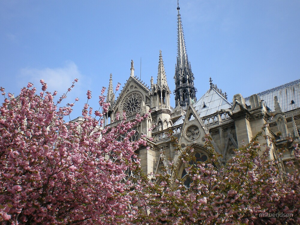 Notre Dame In Bloom by mswendsen