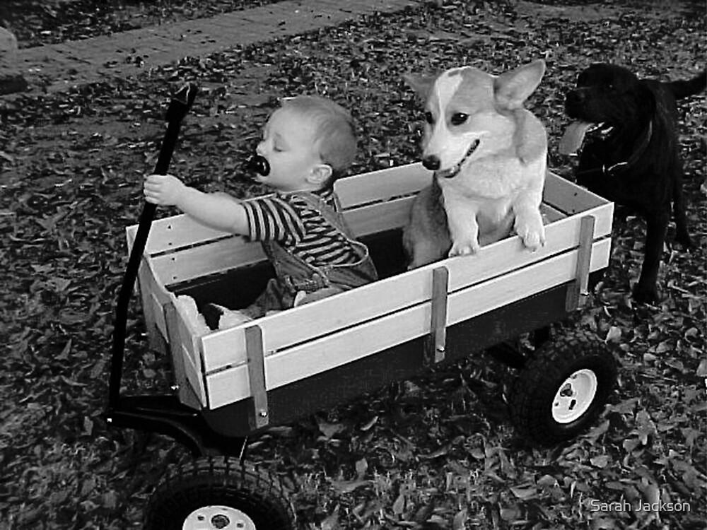 Stella Takes a Ride by Sarah Jackson
