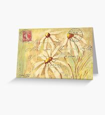 Daisies in Spring Postcard 2 Greeting Card