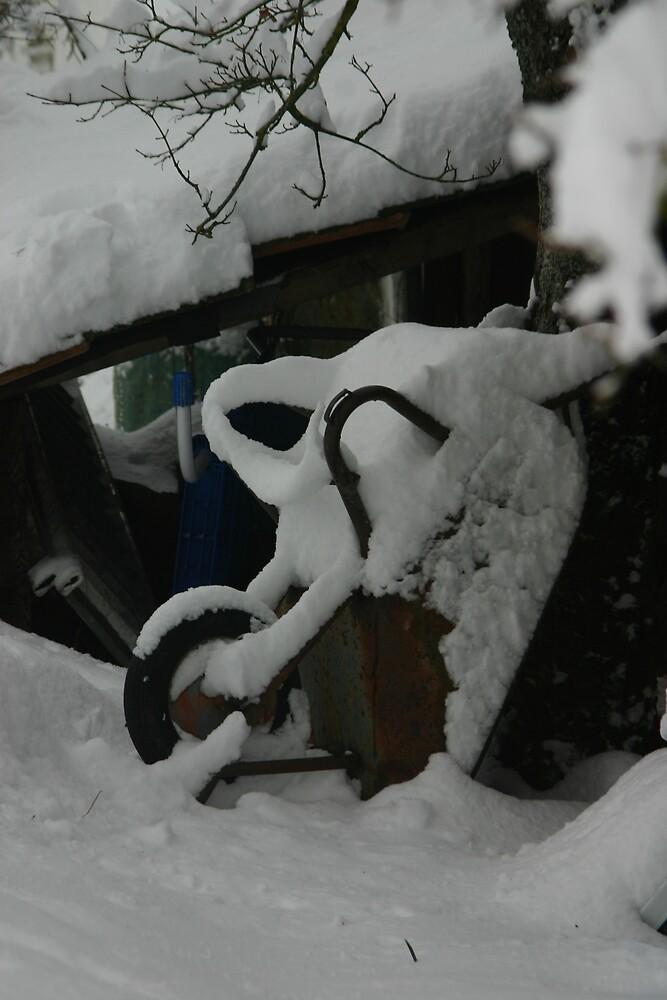 roncore in de sneeuw by yoyo57