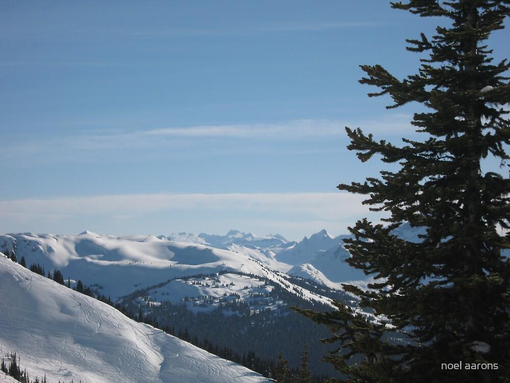 blackcombe mountain canada by noel aarons