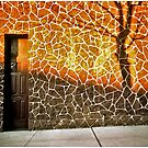 Door Somewhere In Brooklyn by Mark Ross