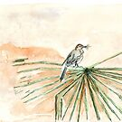The Cape Wagtail thinks it's Spring! by Maree Clarkson