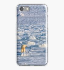 Between sea and ice iPhone Case/Skin