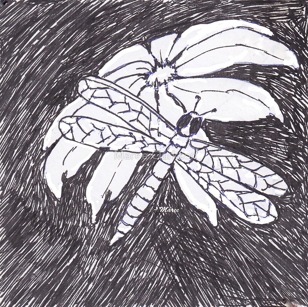 The Dragonfly and the Daisy by Maree Clarkson