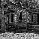 Another Deserted Cabin by Herb Spickard