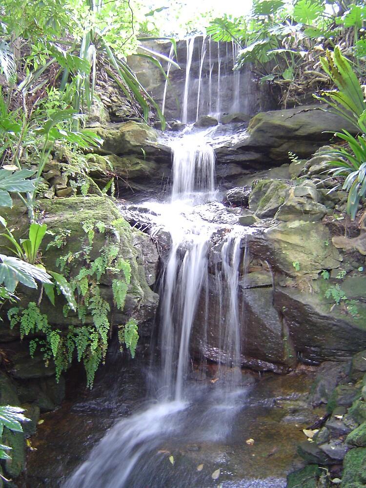 Waterfall by judy
