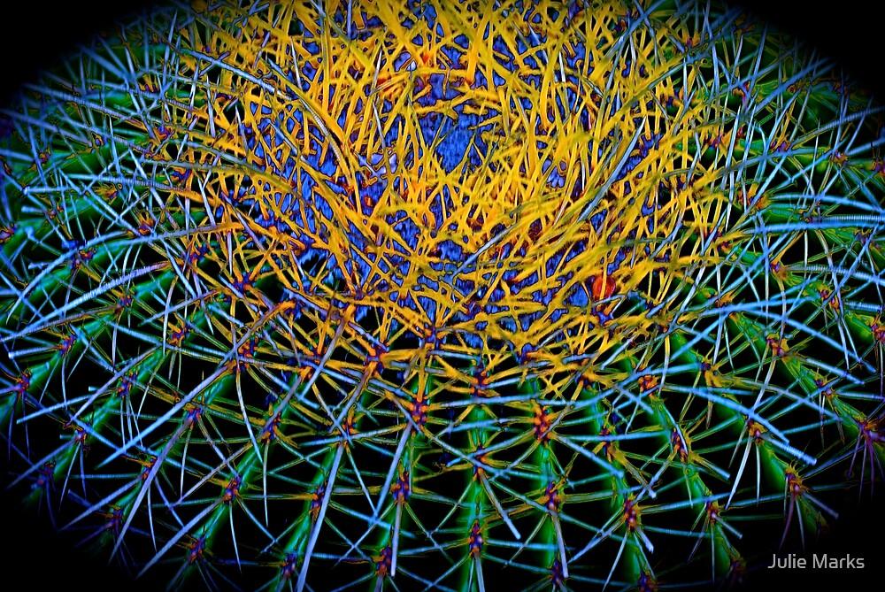 Cactus Burst by Julie Marks