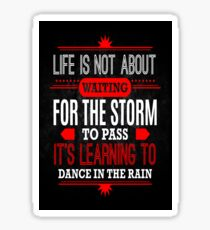 Learning To Dance In The Rain Sticker