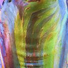 The Tree Bark Collection # 19 - The Magic Tree by Philip Johnson