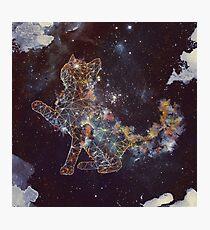 Celestial Cat  Photographic Print