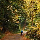 Autumn 17 by Dominika Aniola