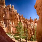 Hoodoos in the Canyon _ Bryce National Park - Utah by Kathy Weaver