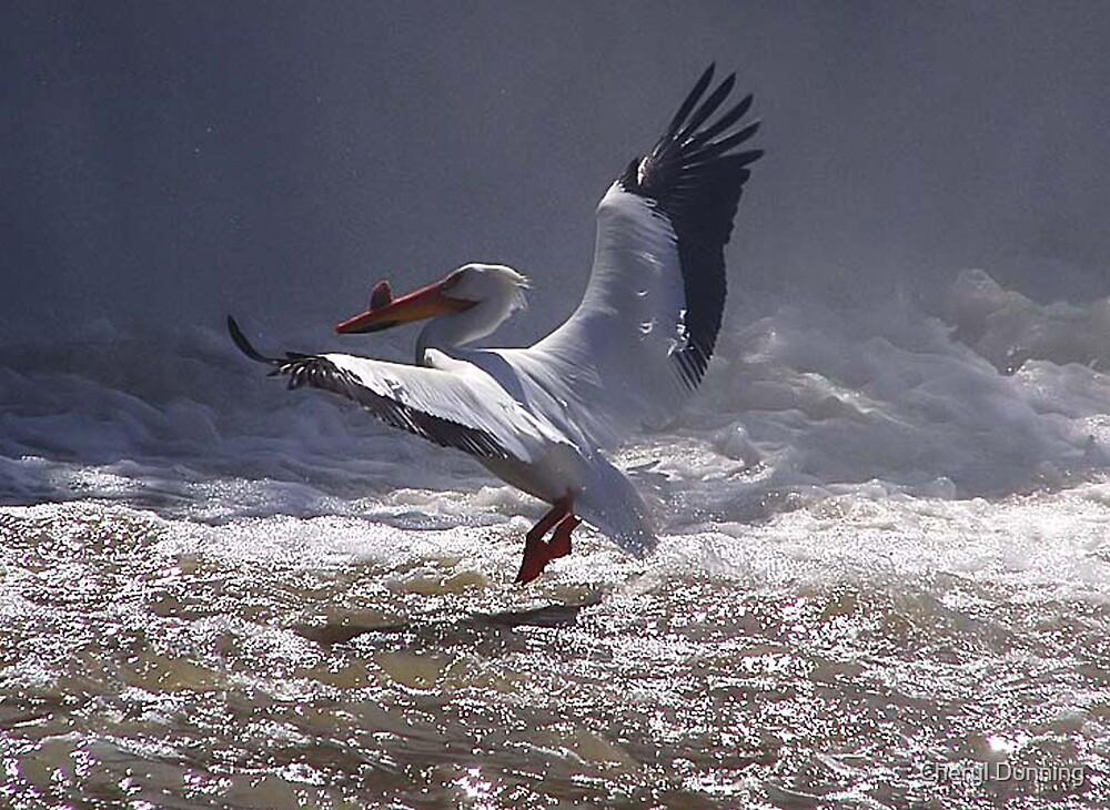 flying in by Cheryl Dunning