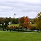 Virginia Countryside in Autumn      ^ by ctheworld